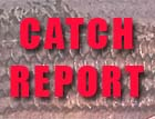 Catch_Report